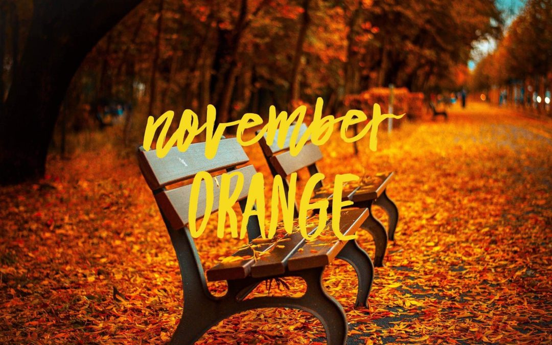 Your Colour for November – Orange