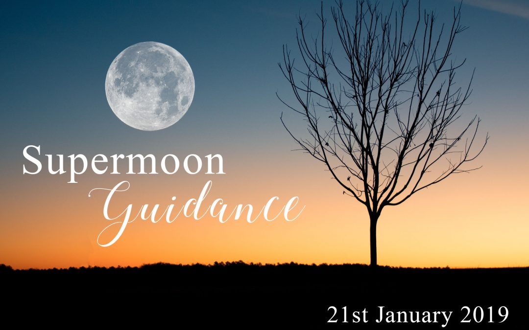 Full Supermoon Guidance on 21st January 2019